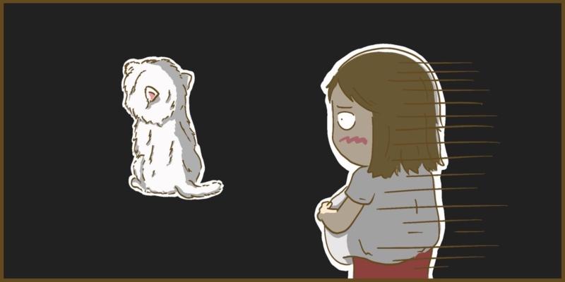 ペットの犬の病気と妊娠中の妻